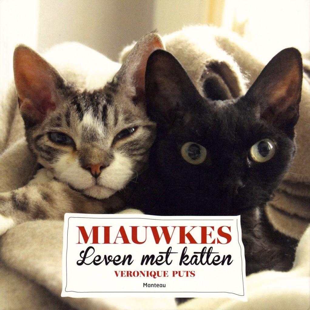 miauwkes1a