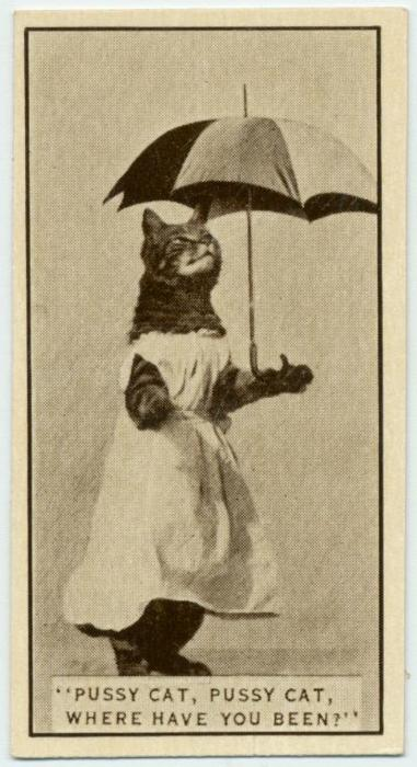 A-cat-poses-for-a-cigarette-card-found-in-Army-Club-Cigarettes.-1932