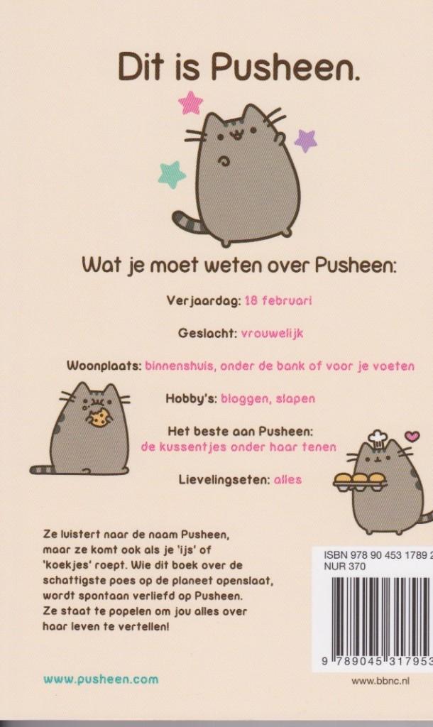pusheen2